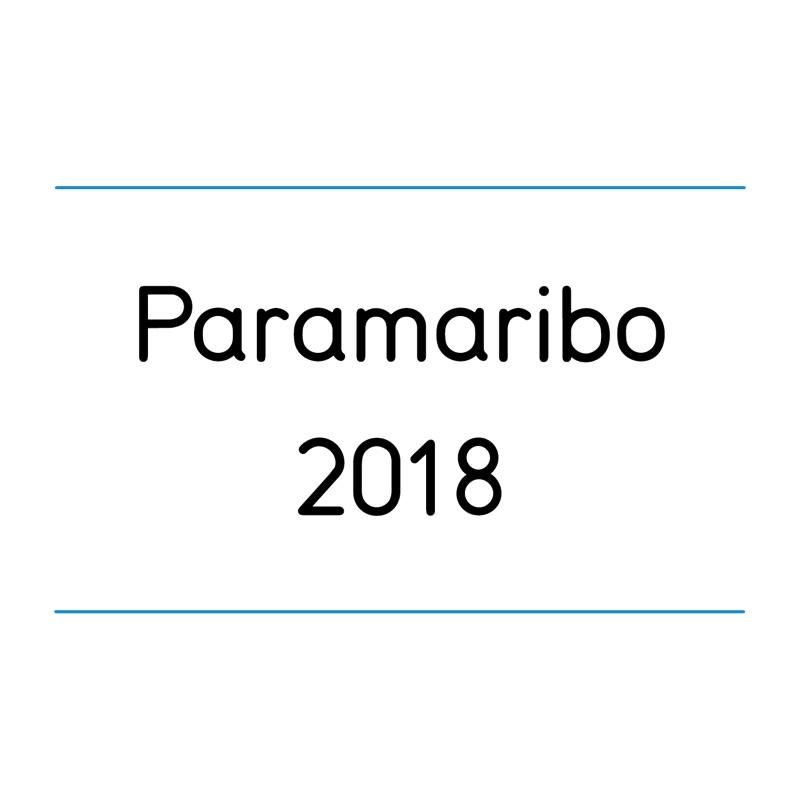 _paramaribo-01